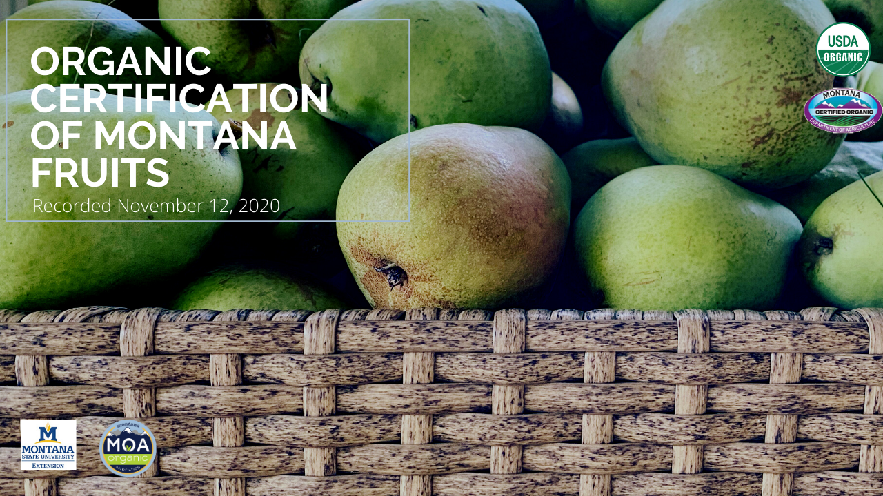 MT organic certification of fruit - thumnail